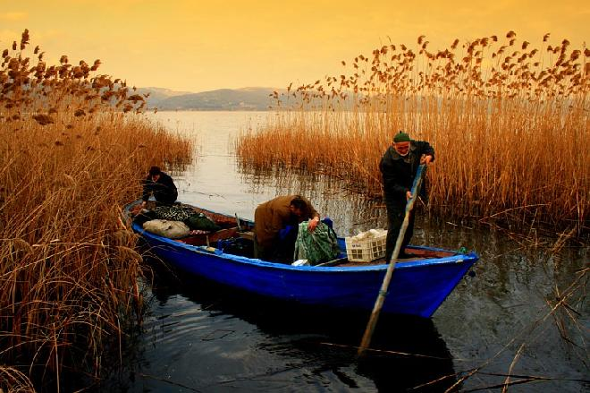 Sailors at Sapanca lake.