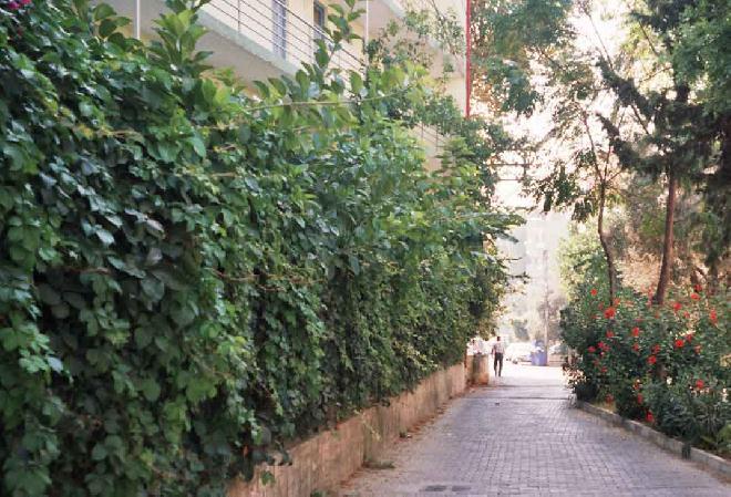 Alanya – Selam Sokak