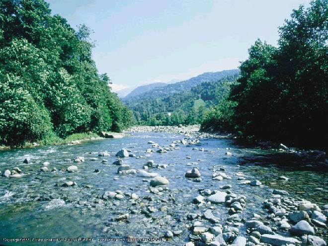 Brook in Arhavi, Artvin
